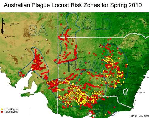 Australian Plague Locust - risk zones Spring 2010.jpg