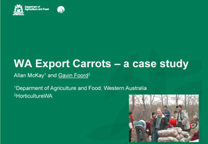 Carrot case study