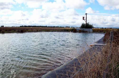 Farm Dam Danger