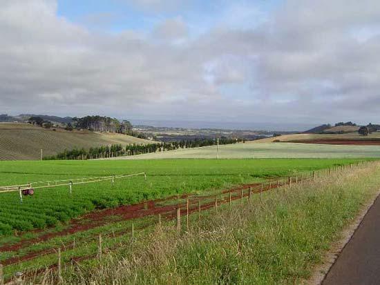Forthside, Tasmania