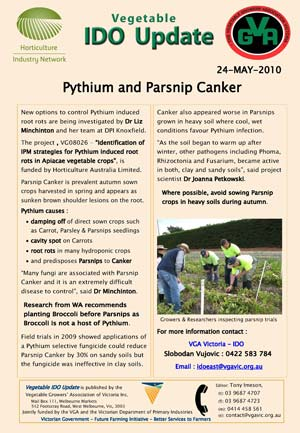 DOWNLOAD : Pythium and Parsnip Canker : 137kb