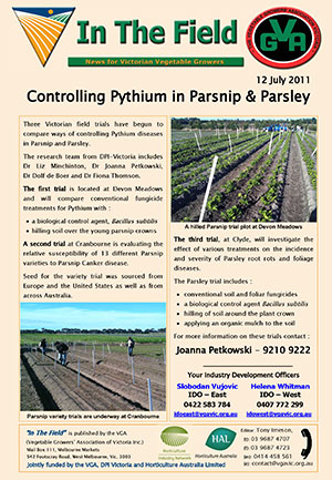Pythium control on Parsnip & Parsley crops