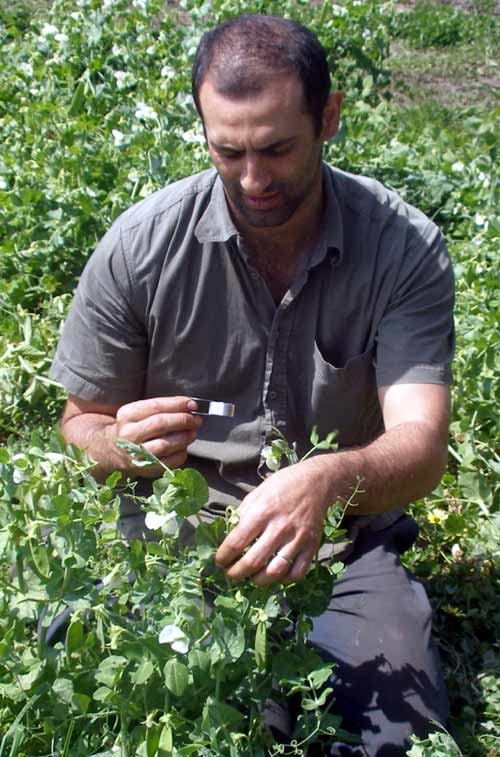 Matt Zagami - Young grower joins Vegetable Growers Association of Victoria