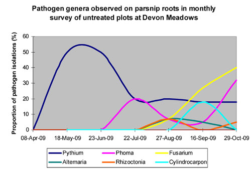 Pathogenic fungi (Fusarium, Phoma, Rhizoctonia & others), entered crops after the cool period