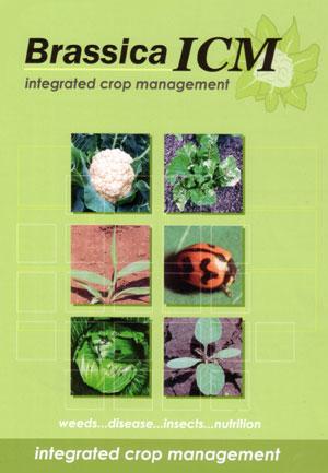 Brassica ICM CD_ROM
