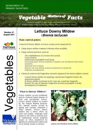 Matters of Facts #47 Lettuce Downy Mildew August 2007