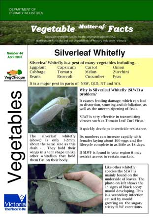Matters of Facts #44 Silverleaf Whitefly April 2007