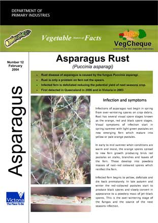 Matters of Facts #12 Asparagus Rust, February 2004