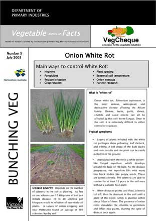 Matters of Facts #05 Onion White Rot, Sclerotinia, October 2003