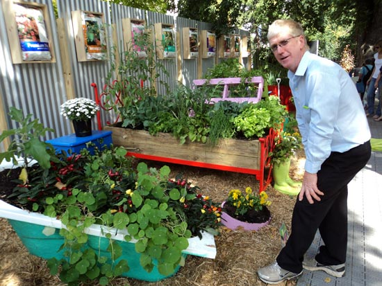 VGA President David Wallace inspects a vegetable display