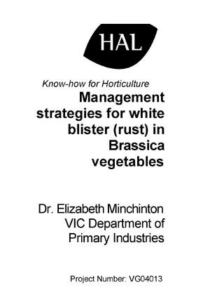 VG04013 Brassica White Blister
