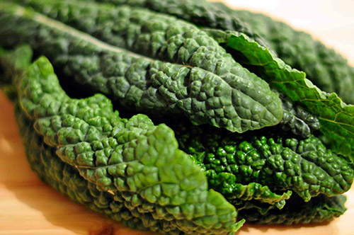 Tuscan Cabbage